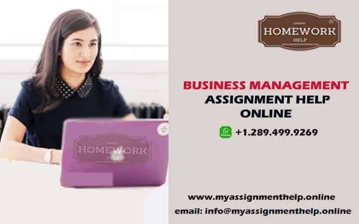 university assignment help online