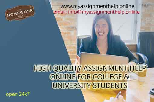 high quality assignment help online