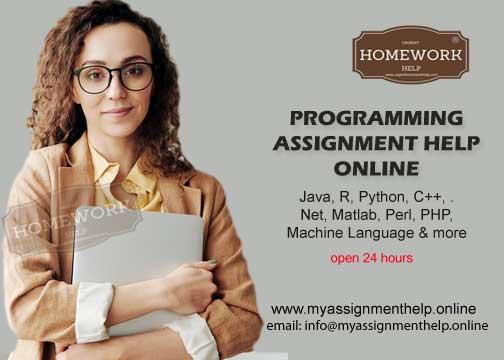 programming assignment help online